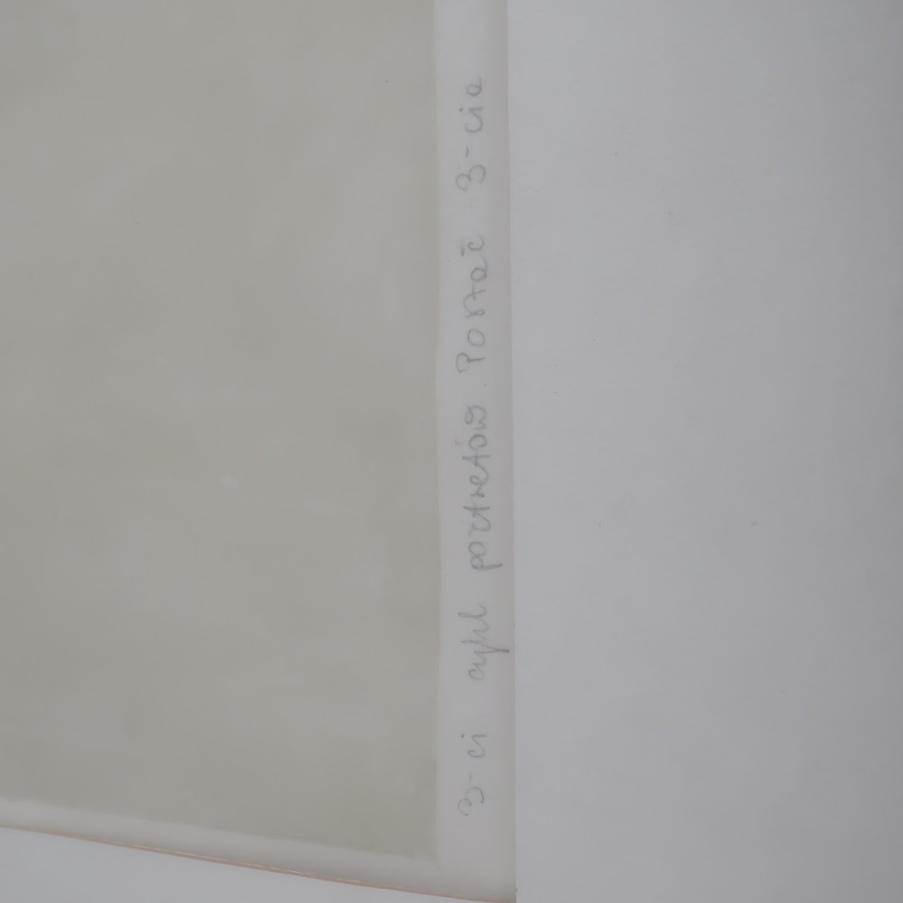 Signed Lithographic Portrait 3