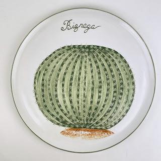 Estranzuela Biznaga Cactus Plato